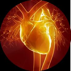 Cardiac  Centre