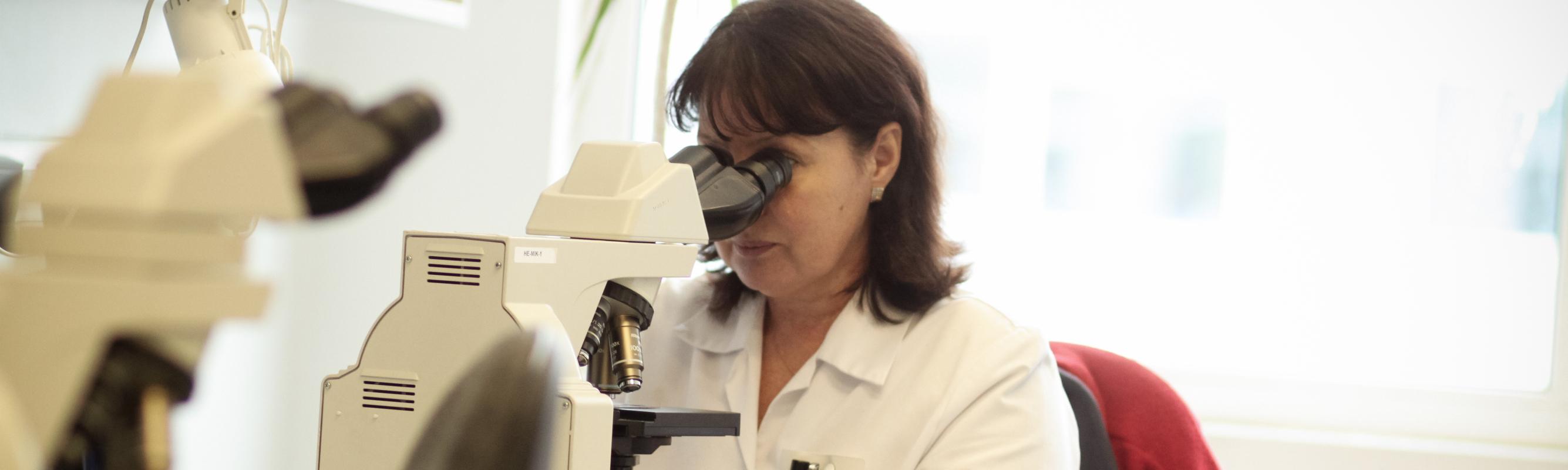 Laboriarst dr Jelena Jerjomina verepilte uurimas